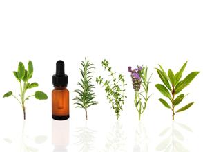 Homeopatia/ Naturopatia